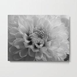 moonlit flower Metal Print