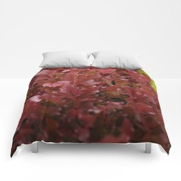 Red Greens Comforters