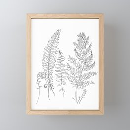 Minimal Line Art Fern Leaves Framed Mini Art Print