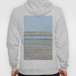 A flock of seagulls in the bay Hoody