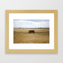 Rhino. Framed Art Print