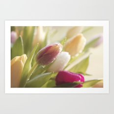 Bouquet of tulips spring flowers in pastel Art Print