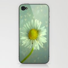 Daisy Love - Flower iPhone & iPod Skin