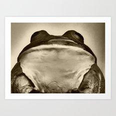 frog idol Art Print