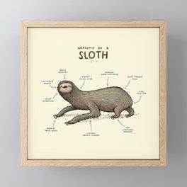 Anatomy of a Sloth Framed Mini Art Print