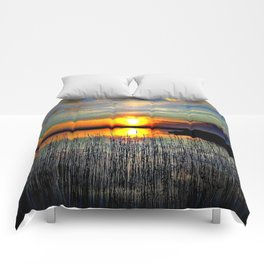 Cabsink16DesignerPatternNCL Comforters