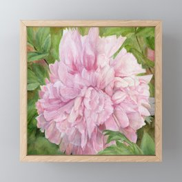 Pink Peony Floral Watercolor Original Painting Botanical Garden Flower Detailed Realism Framed Mini Art Print