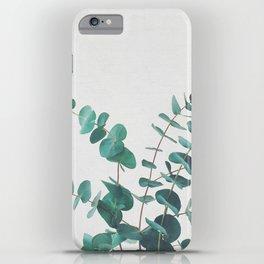 Eucalyptus II iPhone Case