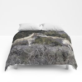 Wild Horses with Playful Spirits No 7 Comforters
