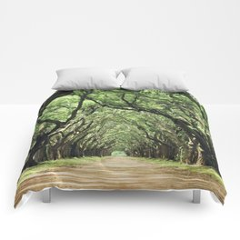 Canopy of Oaks Comforters