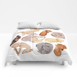 Sleepy dogs Comforters