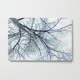 Tree reverse perspective, green leaves, blue sky Metal Print