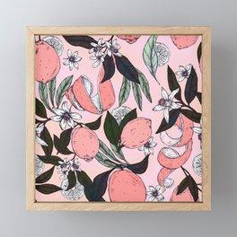 Flowering in the pink oranges Framed Mini Art Print