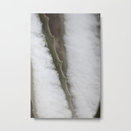 Abstract of Cactus and Snow Metal Print