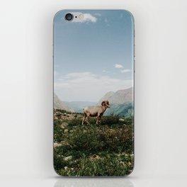 Bighorn Overlook iPhone Skin