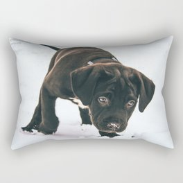 Otis 2 Rectangular Pillow