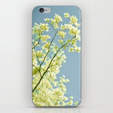 Moment of Truth iPhone & iPod Skin