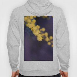 mimosa flower at night Hoody