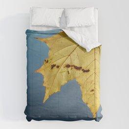 +M+ Comforters