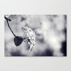 Blossoms in Black and White Canvas Print