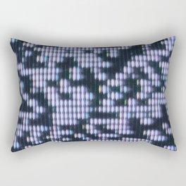 Painted Attenuation 1.4.2 Rectangular Pillow