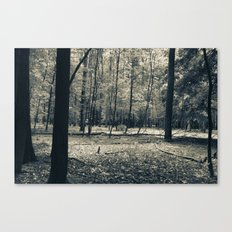 The Serene Forest Canvas Print