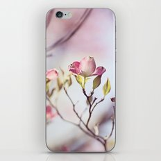 Pink Dogwood Flower Photography, Pastel Lavender Floral, Spring Nature Art iPhone & iPod Skin