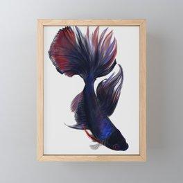 Betta Fish Framed Mini Art Print