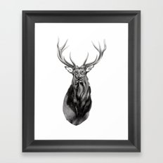 Bull Elk Encounter Framed Art Print