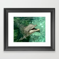 Smiling Dolphin Framed Art Print
