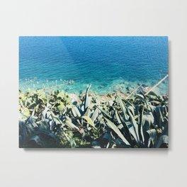Aegean Succulents Metal Print