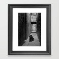 Alley Hound Framed Art Print