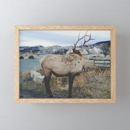 Mammoth Elk Framed Mini Art Print