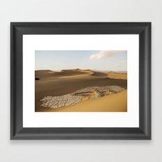 Mesquite Sand Dunes Framed Art Print