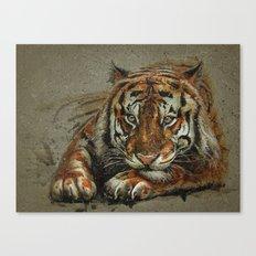 Tiger background Canvas Print