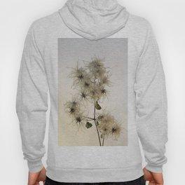 Florales · plant end 7 Hoody