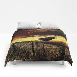 Sunset Crow on Country Fence Modern Country A396 Comforters