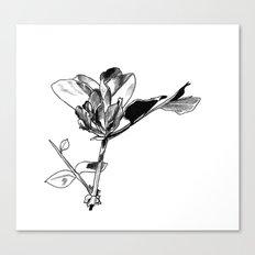 Daily Petals Canvas Print