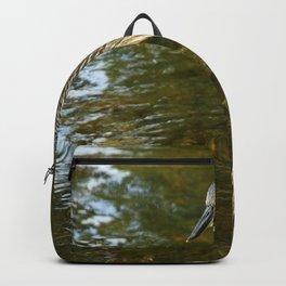 Juvenile Yellow Crowned Night Heron Backpack
