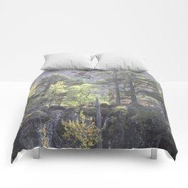 A Dream Pang Comforters
