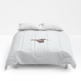 Solo Flight Comforters