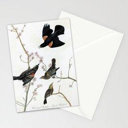 Red-winged Starling Or Marsh Blackbird - John James Audubon Stationery Cards