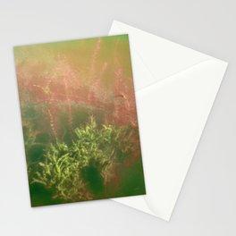 Underwater plants. Krka National Park, Croatia Stationery Cards
