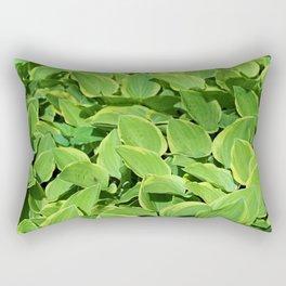 Hosta -Golden Tiara Hostaceae Rectangular Pillow