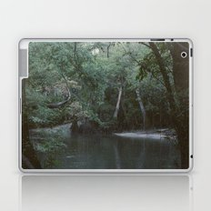 Drabby Swampy Creek Laptop & iPad Skin