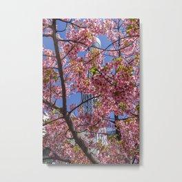 Skytree Sakuras 2, Tokyo Japan Metal Print