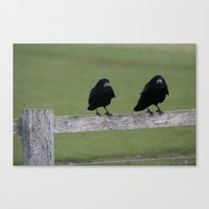 Just Two Birds  Canvas Print