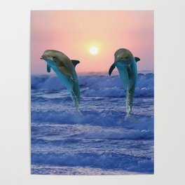 Dolphins at sunrise Poster