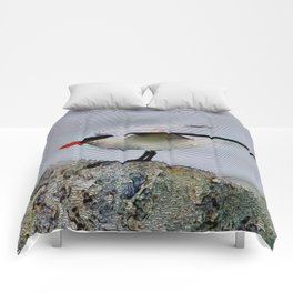 Maritime Stripes Relief Comforters