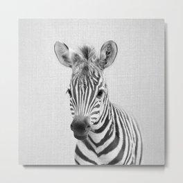 Baby Zebra - Black & White Metal Print
